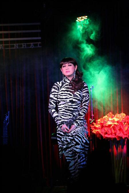 Vietnamese-American pop star Y Lan performs in HCM City