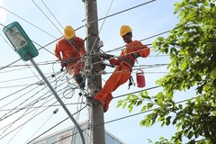 Vietnam Electricity Group to complete divestment in 2019