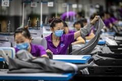 Bị đánh thuế, doanh nghiệp Mỹ rời Trung Quốc đi đâu?