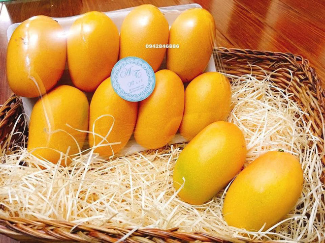 Chị em 'phát sốt' với xoài mini nhập khẩu giá gần 200.000 đồng/quả