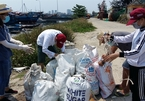 Communities across Vietnam's central region go green