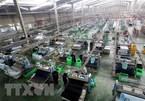 Vietnam economy to grow at 6.7%: report