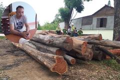Hàng loạt cán bộ kiểm lâm, bảo vệ rừng bị truy tố vụ Phượng 'râu'