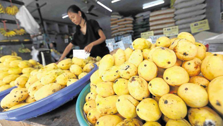 Philippines,Nông nghiệp,xoài,trái cây,nông dân,nguồn cung,quá tải,Manila,Bộ Nông Nghiệp,xuất khẩu,thị trường
