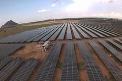 Sao Mai góp quỹ điện mặt trời 2.500 MW