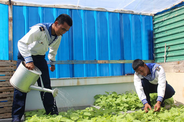 Growing vegetables against all odds on the Spratly Islands
