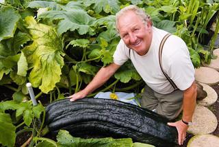 Thăm vườn rau 'siêu to khổng lồ', bí nặng 45 kg, bắp cải 55 kg