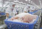 Overview of Vietnam's seafood export in July