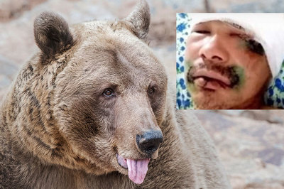 Người đàn ông cắn đứt lưỡi gấu trong trận chiến sống mái