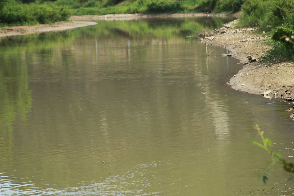 Nhà máy ở Nghệ An bị tố lấy nước ô nhiễm sản xuất nước sạch