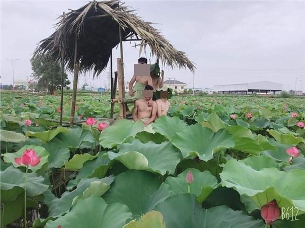 Chụp ảnh,Hồ sen