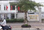 Tạm giữ Bí thư đoàn phường ở Thái Bình nghi dâm ô bé gái 11 tuổi