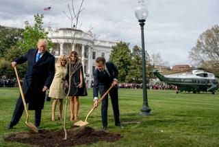 Tổng thống Pháp sẽ gửi tặng ông Trump cây mới