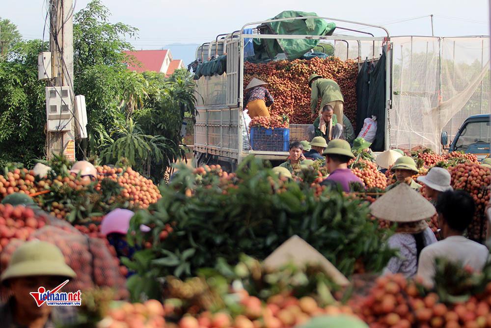 Xe tải tấp nập chở vải thiều đi 'xuất khẩu' và nụ cười quên nắng nóng