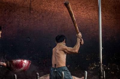 Đánh lợn bất tỉnh và sự tàn bạo trong các lò giết mổ ở Thái Lan