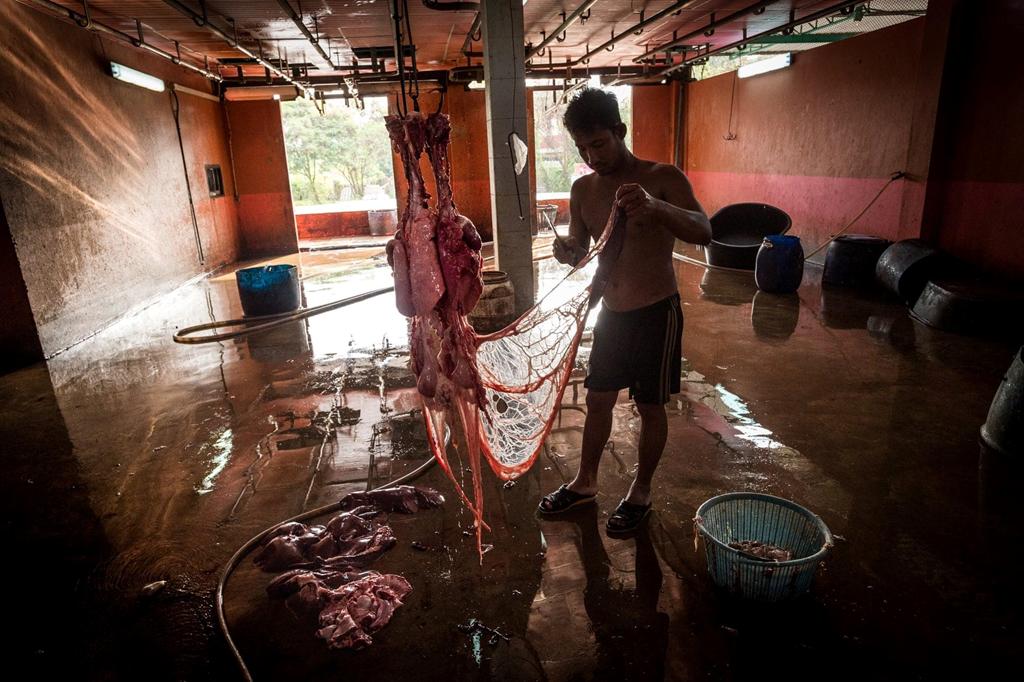 Thái Lan,thịt lợn