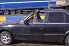 Hài hước chú chó lái xe sang BMW quanh thành phố
