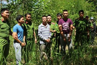 Man arrested over Lam Dong deforestation case