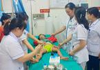 Bé gái 3 tuổi bị sốc phản vệ, suýt tử vong do kiến đốt