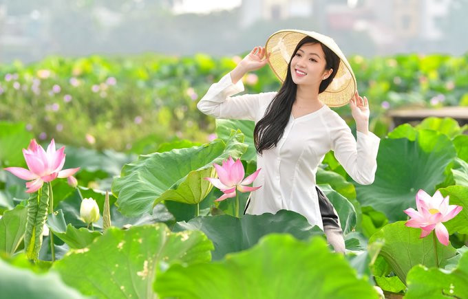 Top five most beautiful lotus ponds in Hanoi and HCM City