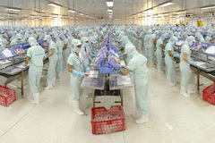 Vietnam's businesses try to exploit unfamiliar markets