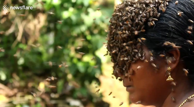 Xem bà mẹ Ấn Độ thản nhiên cho ong bu kín mặt cạnh các con