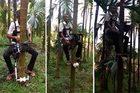 Xem nông dân tận dụng xe cũ chế thang máy leo cây cực đỉnh