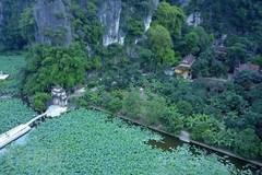 Bich Dong pagoda in lotus season