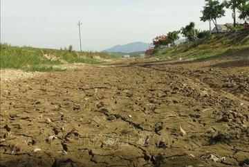Climate change: Quang Binh faces severe drought