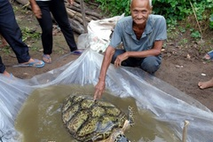 Endangered sea turtle found in fishing net