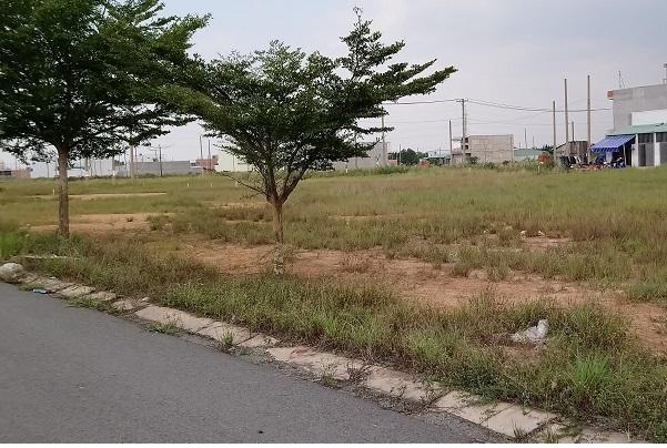 Quận Tân Bình,Dự án ma,Đất nền,Công ty môi giới bất động sản