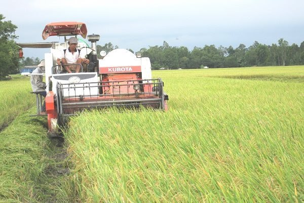 Agricultural production poses environmental risk for Vietnam: expert