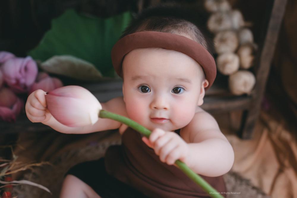 Hoa sen,Nhiếp ảnh gia