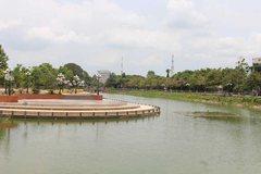 Mekong Delta sinking sparks concern