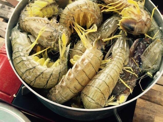Tôm tít ở huyện Năm Căn, tỉnh Cà Mau giờ đây có giá, trong nhà hàng, giá tôm tít lên tới vài trăm ngàn đồng/ký...