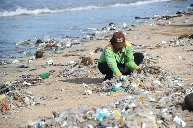 International cooperation needed to protect environment
