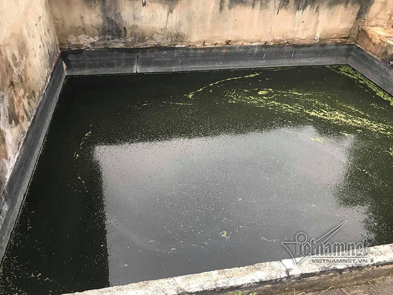 ô nhiễm,ô nhiễm môi trường,AB Mauri,Đồng Nai