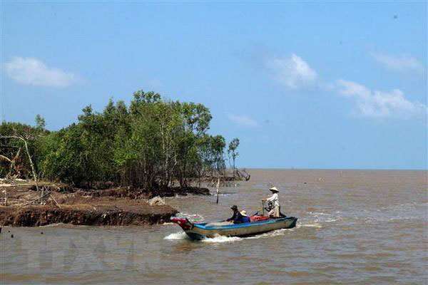 Sea dike erosion worsens in Kien Giang