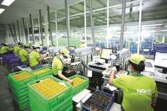 Does Vietnam needs private 'super conglomerates'?