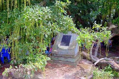 Gò lộc vừng ngàn năm tuổi độc nhất vô nhị ở Việt Nam