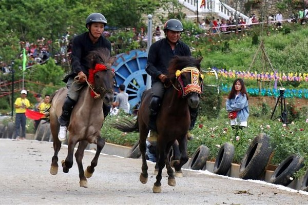 Fansipan Horse Race 'Galloping Horses' 2019