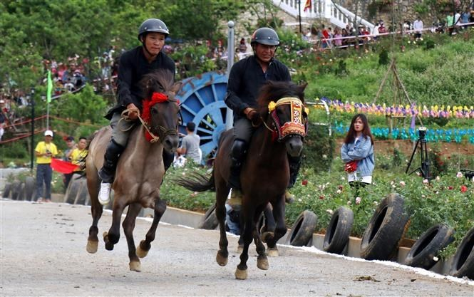 Fansipan Horse Race 'Galloping Horses' 2019,racehorse,entertainment news,what's on,Vietnam culture,Vietnam tradition