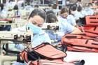 Đón ngày đặc biệt, gần 100% hàng Việt sang EU được xóa bỏ thuế