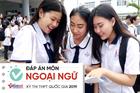 Đáp án tham khảo môn Tiếng Anh thi THPT Quốc gia năm 2019 tất cả mã đề