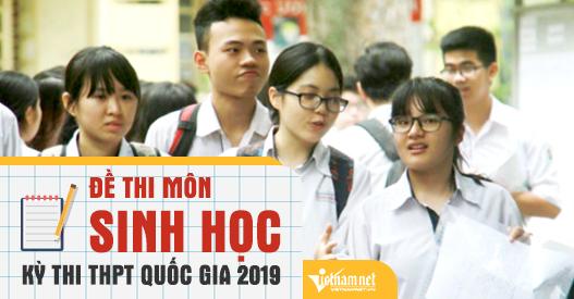 Đề thi THPT quốc gia môn Sinh học 2019 chính thức của Bộ GD-ĐT