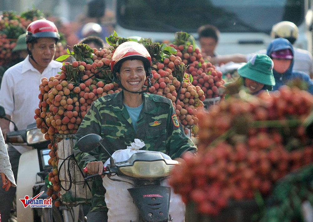 nông dân,nông dân trồng vải,vải thiều,vải thiều Bắc Giang,vải thiều lục ngạn