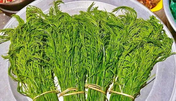 Kỳ lạ, loài rau dại hôi xì ở Tuyên Quang ăn 1 lần thấy sợ, ăn lần 2 đâm nghiện