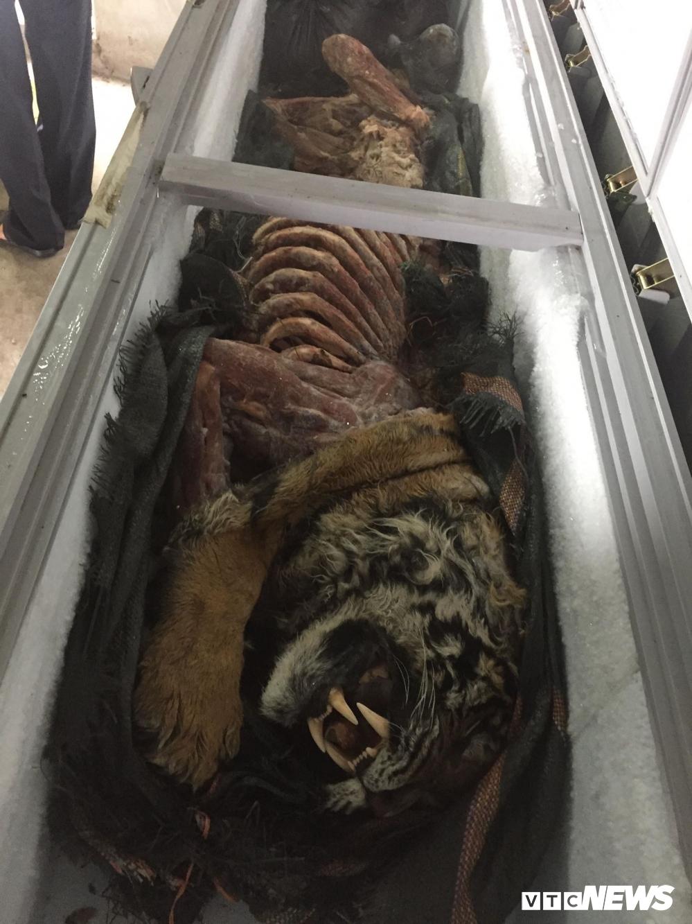 Tận mắt buổi 'hành quyết' chúa sơn lâm ở lò nấu cao hổ vùng Tây Bắc