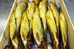 Cá chết ướp muối lên men, món ăn tử thần đắt khách ở Ai Cập