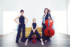 German trio to perform at conservatory of music